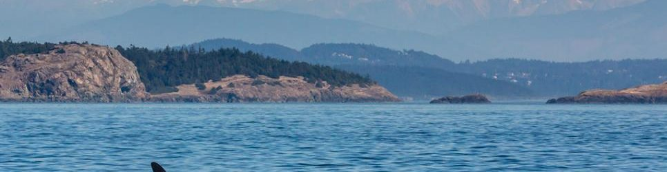 couples vacations in washington san juan island