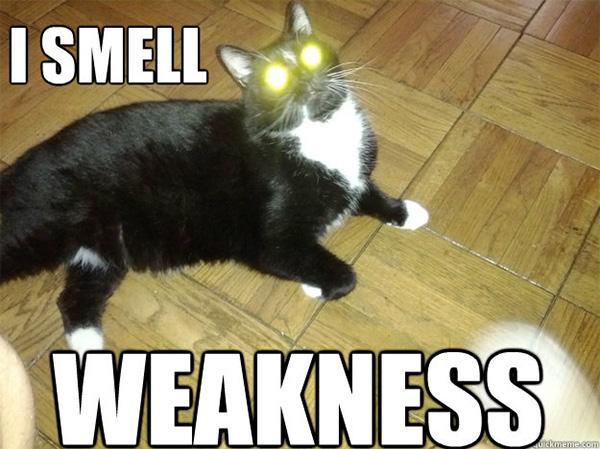 Work on Weakness